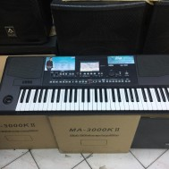 keyboard KORG PA-300 piano korg pa300 keyboard audio