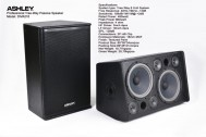 Speaker Pasif ASHLEY DIVA210