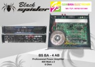 POWER AMPLIFIER BLACK SPIDER BS BA 4AB ORIGINAL Professional