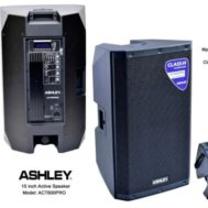 Speaker Active Ashley 15 Inch ACT600 Pro Satu Pasang 2 Unit